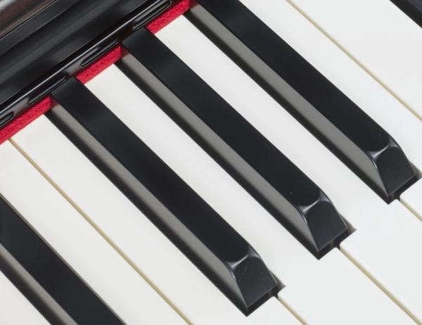 Keys of the Yamaha YDP-163