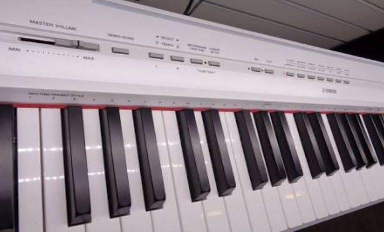 The control penal of Yamaha P115